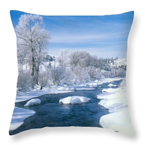 Yampa River Throw Pillow featuring the photograph Yampa River Colorado by James Steinberg