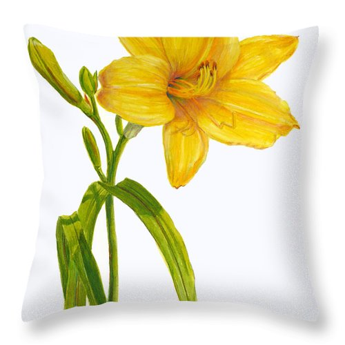 Daylily Throw Pillow featuring the painting Yellow Daylily - Hemerocallis by Janet Zeh
