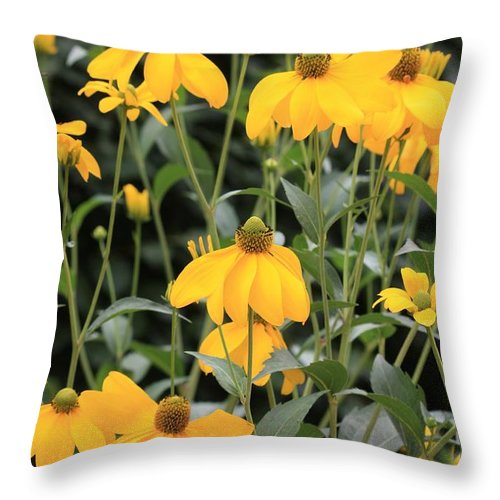Flower Throw Pillow featuring the photograph Yellow Echinacea by Carol Groenen