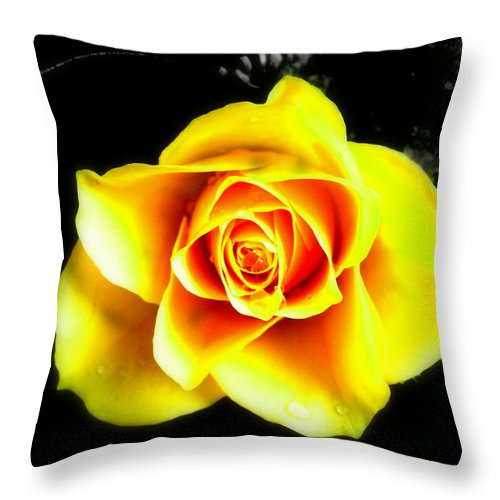 Plant Throw Pillow featuring the photograph Yellow Flower On A Dark Background by Steve Kearns