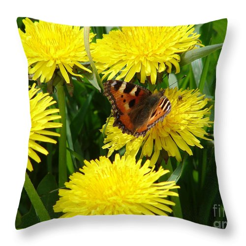 Butterfly Throw Pillow featuring the photograph Yellow Flowers by Carol Lynch