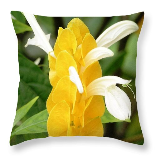 Mary Deal Throw Pillow featuring the photograph Yellow Ginger Blossom by Mary Deal
