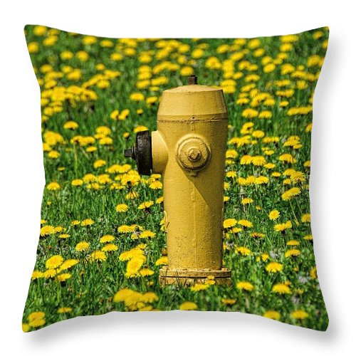 Hydrant Throw Pillow featuring the photograph Yellow by Henry Kowalski