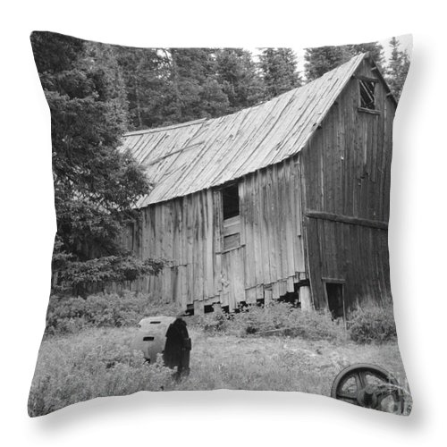 Yellow Jacket Mine Site Throw Pillow featuring the photograph Yellow Jacket Mine Site by Tonya Hance