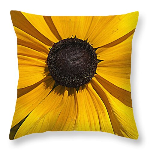 Yellow Flower Throw Pillow featuring the photograph Yellow Macro by Laurie Perry