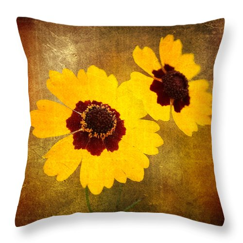 Flower Throw Pillow featuring the photograph Yellow Prize by Scott Pellegrin