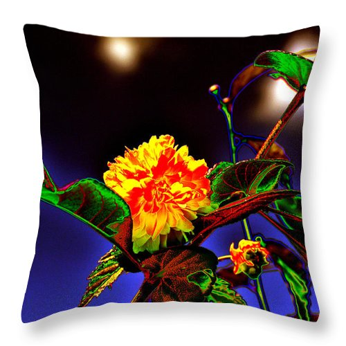 Background Throw Pillow featuring the photograph Yellow Queen on the morning dream by Adrian Bud