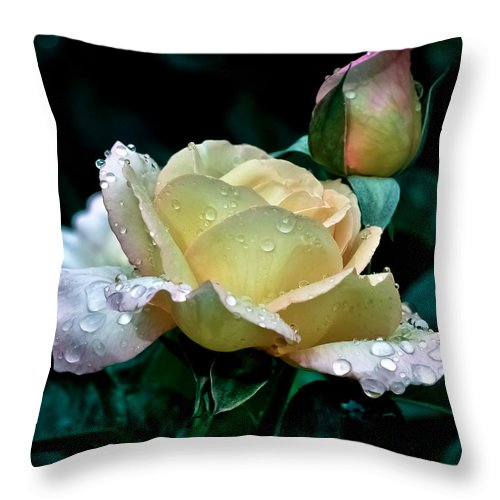 Bloom Throw Pillow featuring the photograph Yellow Rose Morning Dew by Julie Palencia
