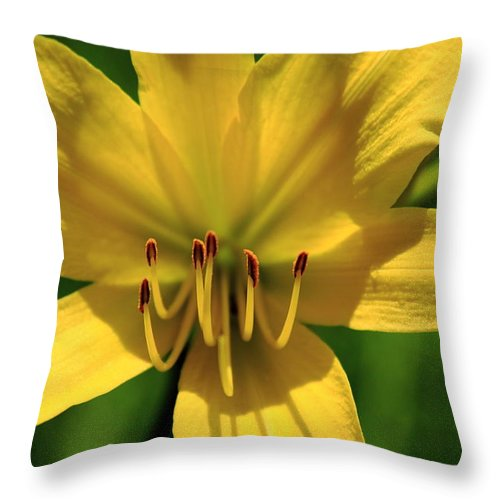 Flower Throw Pillow featuring the photograph Yellow Too Lily Flower Art by Reid Callaway