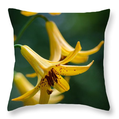 Flowers Throw Pillow featuring the photograph Yellow Trumpets by Paula Apro
