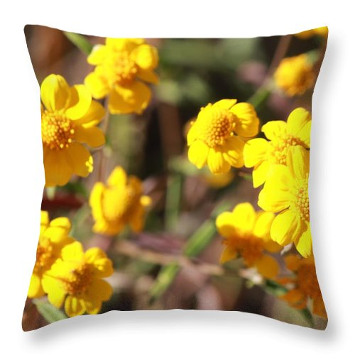 Landscape Throw Pillow featuring the photograph Yellow Wild Flowers by Phyllis Bradd