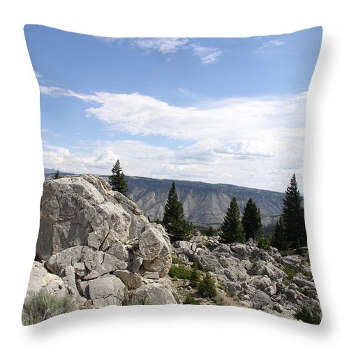 Yellowstone Landscape Throw Pillow featuring the photograph Yellowstone N P Landscape by Christiane Schulze Art And Photography