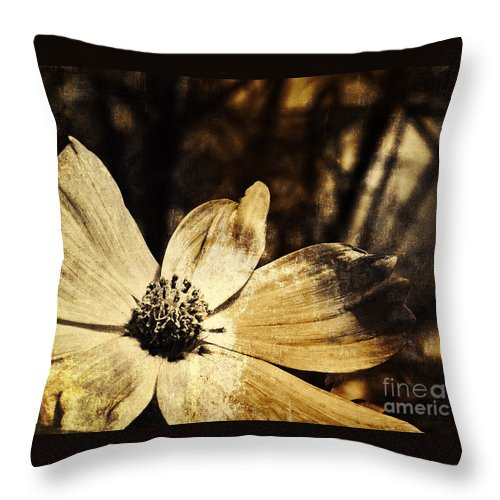 Cosmos Throw Pillow featuring the photograph Yesterday's Flower by Pam Holdsworth