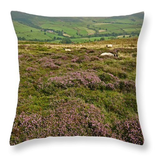 Heather Throw Pillow featuring the photograph Yorkshire Moors Heather by John Topman