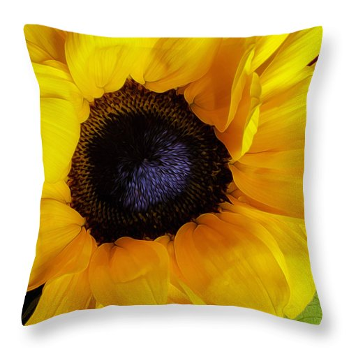 Vibrant Throw Pillow featuring the photograph You Are My Sunshine by Hal Halli