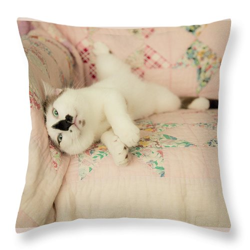 Cat Throw Pillow featuring the photograph You Love Me Don't You by Theresa Tahara