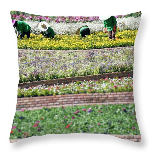 Thailand Throw Pillow featuring the photograph You Reap What You Sow by A Rey