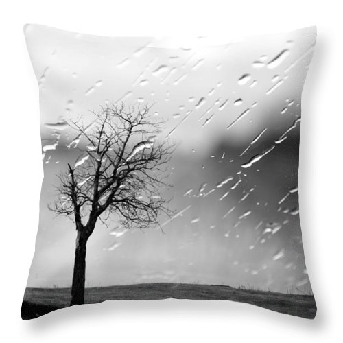 Tree Throw Pillow featuring the photograph Your Tears I Root by The Artist Project