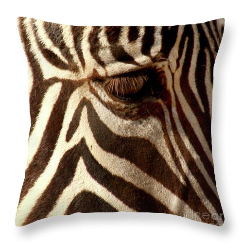 Zebra Throw Pillow featuring the photograph Zebra Patterns by Bob and Jan Shriner