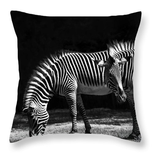 Zebra Throw Pillow featuring the digital art Zebra Unique Patterns by Diane Dugas