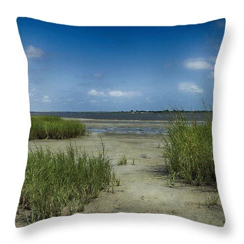 Blue Throw Pillow featuring the photograph Zeke's Island by Seth Solesbee