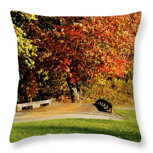 Autumn Colors Throw Pillow featuring the photograph  Autumn Colors by Heinz G Mielke