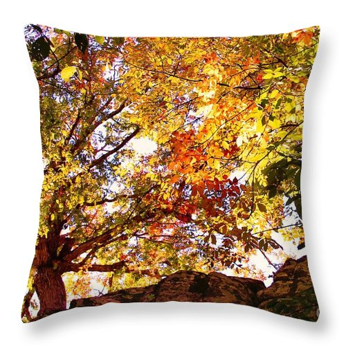 Trees Throw Pillow featuring the photograph Autumn High by Carolyn Wright