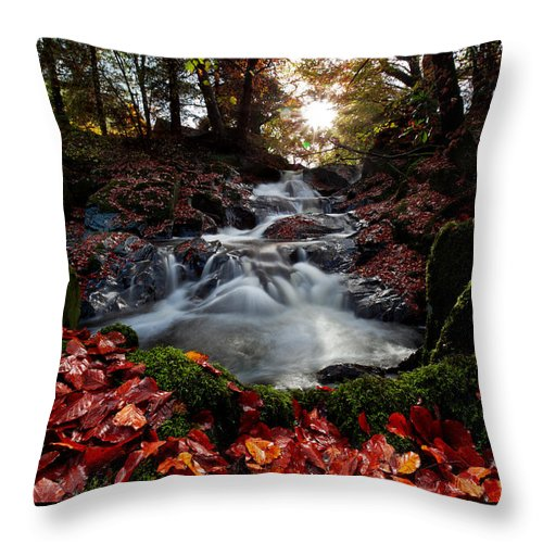 Fall Throw Pillow featuring the photograph Falls In The Fall by Beverly Cash
