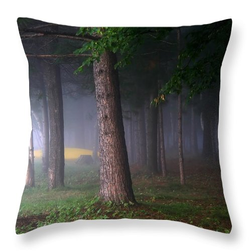 Morning Throw Pillow featuring the photograph Morning Mist by Jim Nelson