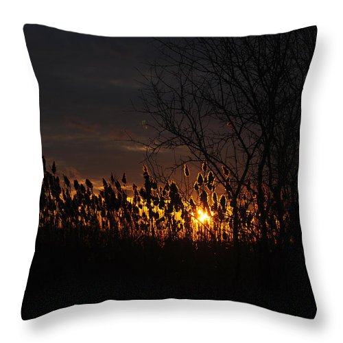 Throw Pillow featuring the photograph 04 Sunset by Michael Frank Jr