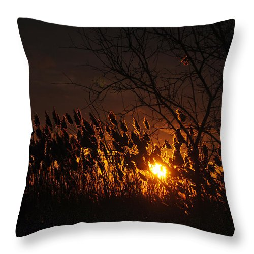 Throw Pillow featuring the photograph 06 Sunset by Michael Frank Jr