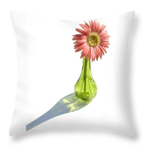 Gerber Photographs Throw Pillow featuring the photograph 0665a1-1 by Kimberlie Gerner