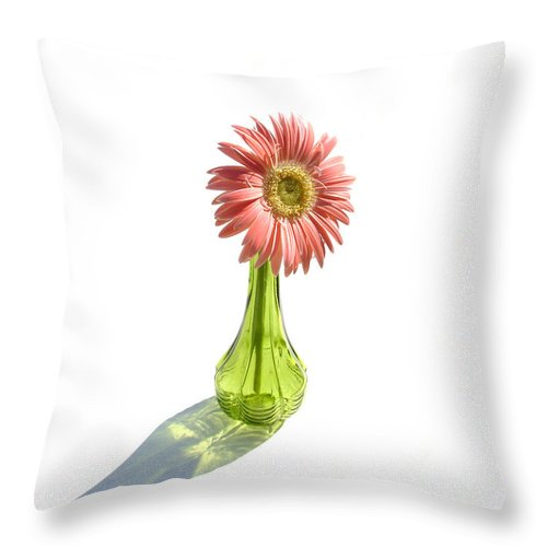 Gerber Photographs Throw Pillow featuring the photograph 0665a1 by Kimberlie Gerner
