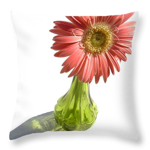 Gerber Photographs Throw Pillow featuring the photograph 0666a1-1 by Kimberlie Gerner