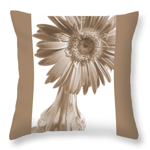 Gerber Photographs Throw Pillow featuring the photograph 0666a1-5 by Kimberlie Gerner