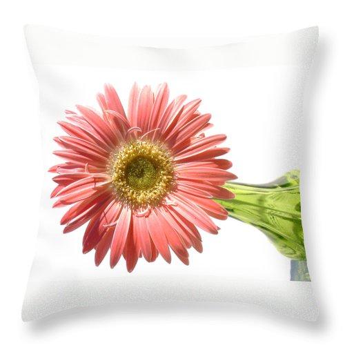 Gerber Photographs Throw Pillow featuring the photograph 0668a1-6 by Kimberlie Gerner