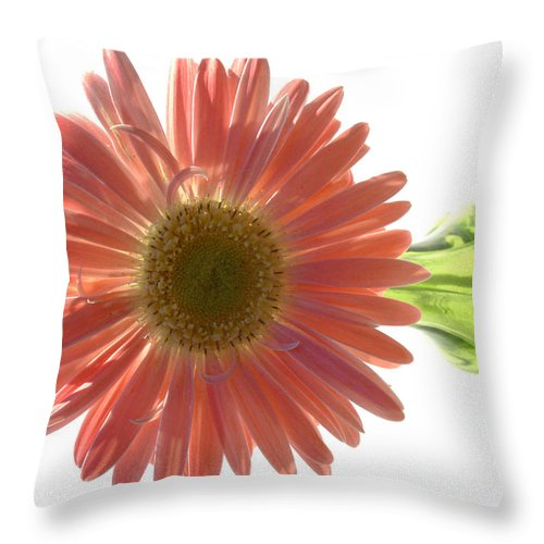 Gerber Photographs Throw Pillow featuring the photograph 0681a by Kimberlie Gerner
