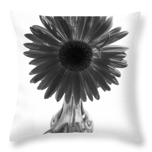 Gerber Photographs Throw Pillow featuring the photograph 0682a3 by Kimberlie Gerner