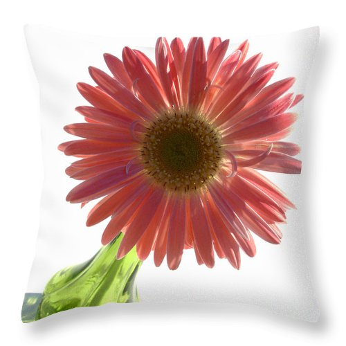 Gerber Photographs Throw Pillow featuring the photograph 0685a2 by Kimberlie Gerner