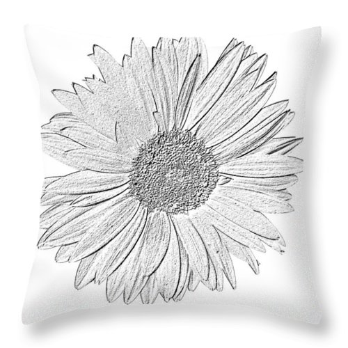 Gerber Photographs Throw Pillow featuring the photograph 5552c5 by Kimberlie Gerner
