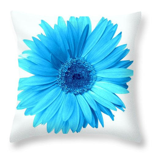 Gerber Photographs Throw Pillow featuring the photograph 5552c6-003 by Kimberlie Gerner