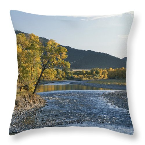 North America Throw Pillow featuring the photograph A Scenic View Of The Yellowstone River by Tom Murphy