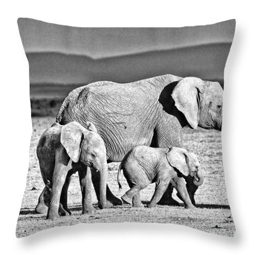 Africa Throw Pillow featuring the photograph African Elephant In The Masai Mara by Perla Copernik