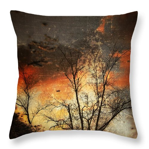 Reflection Throw Pillow featuring the photograph After The Rain by Gray Artus