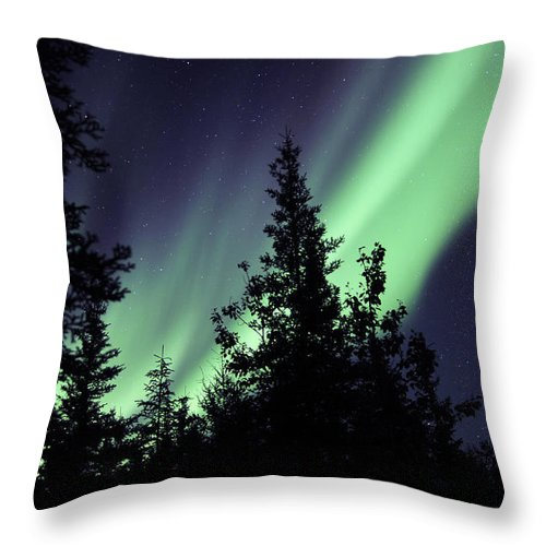 Yellowknife Throw Pillow featuring the photograph Aurora Borealis Above The Trees by Jiri Hermann
