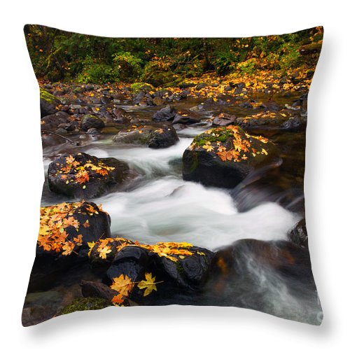 Skate Creek Throw Pillow featuring the photograph Autumn Passing by Mike Dawson