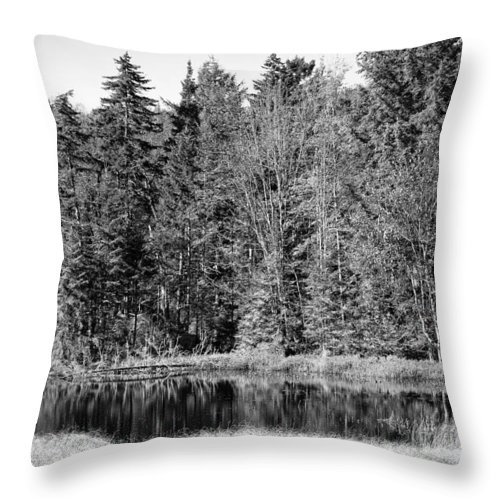 Autumn Throw Pillow featuring the photograph Autumn Reflections by David Patterson