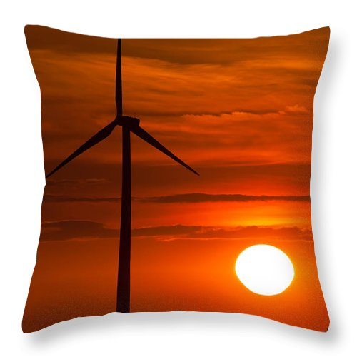 Alternative Throw Pillow featuring the photograph Bathed In Orange by Jim Finch