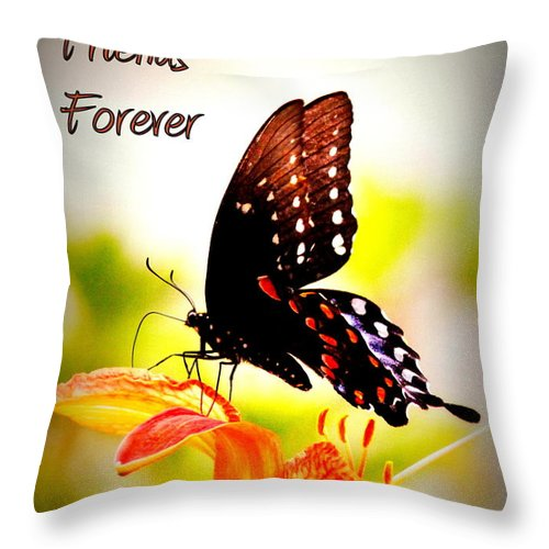 Best Friends Forever Throw Pillow featuring the photograph Best Friends Forever by Travis Truelove