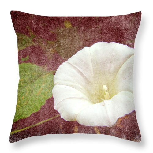 Wildflower Throw Pillow featuring the photograph Bindweed - The Wild Perennial Morning Glory by Mother Nature